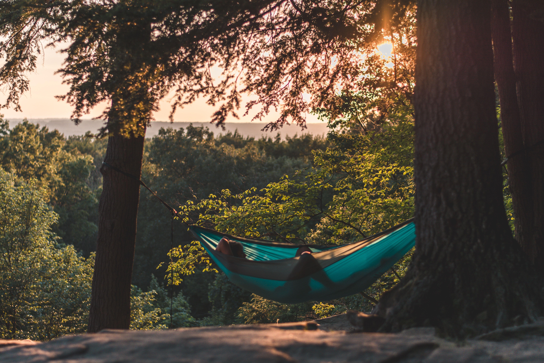 Man laying in hammock looking at sunset